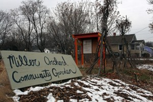 Winter with Art & Ecology infrastructure at Miller-Orchard Community Garden