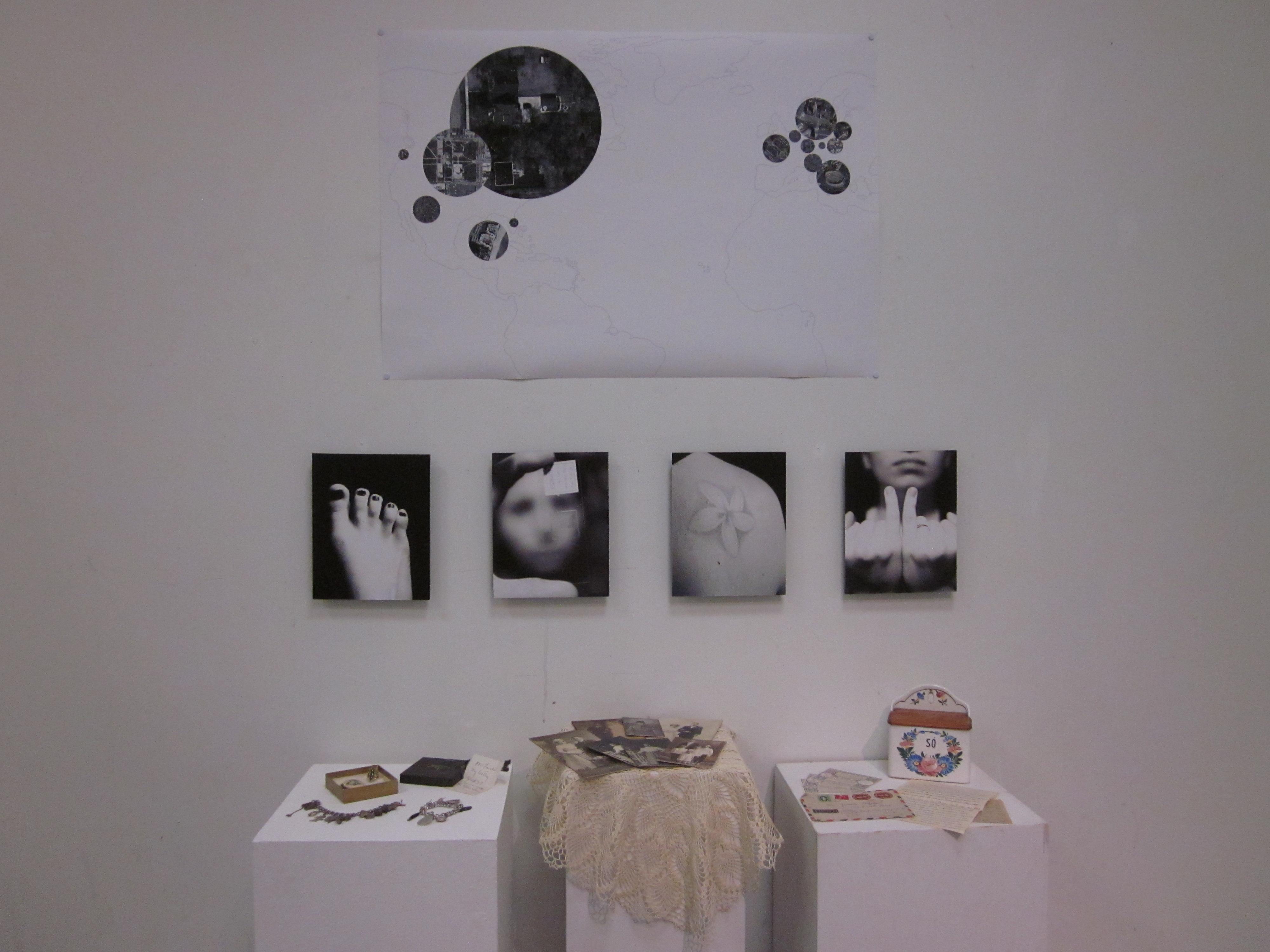 Lauren Fischer, Identity Project, Intermedia II